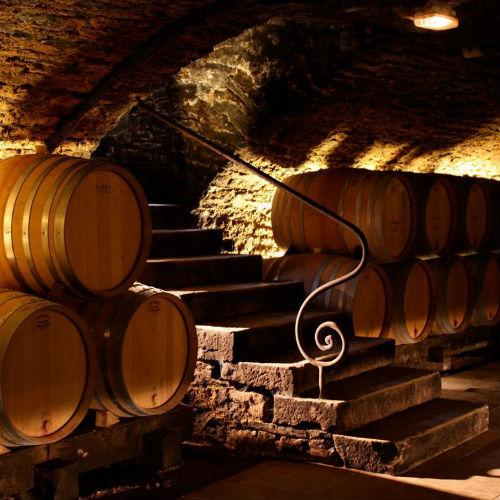 Vinkælder i Bourgogne
